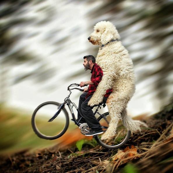 riding-the-bike.png