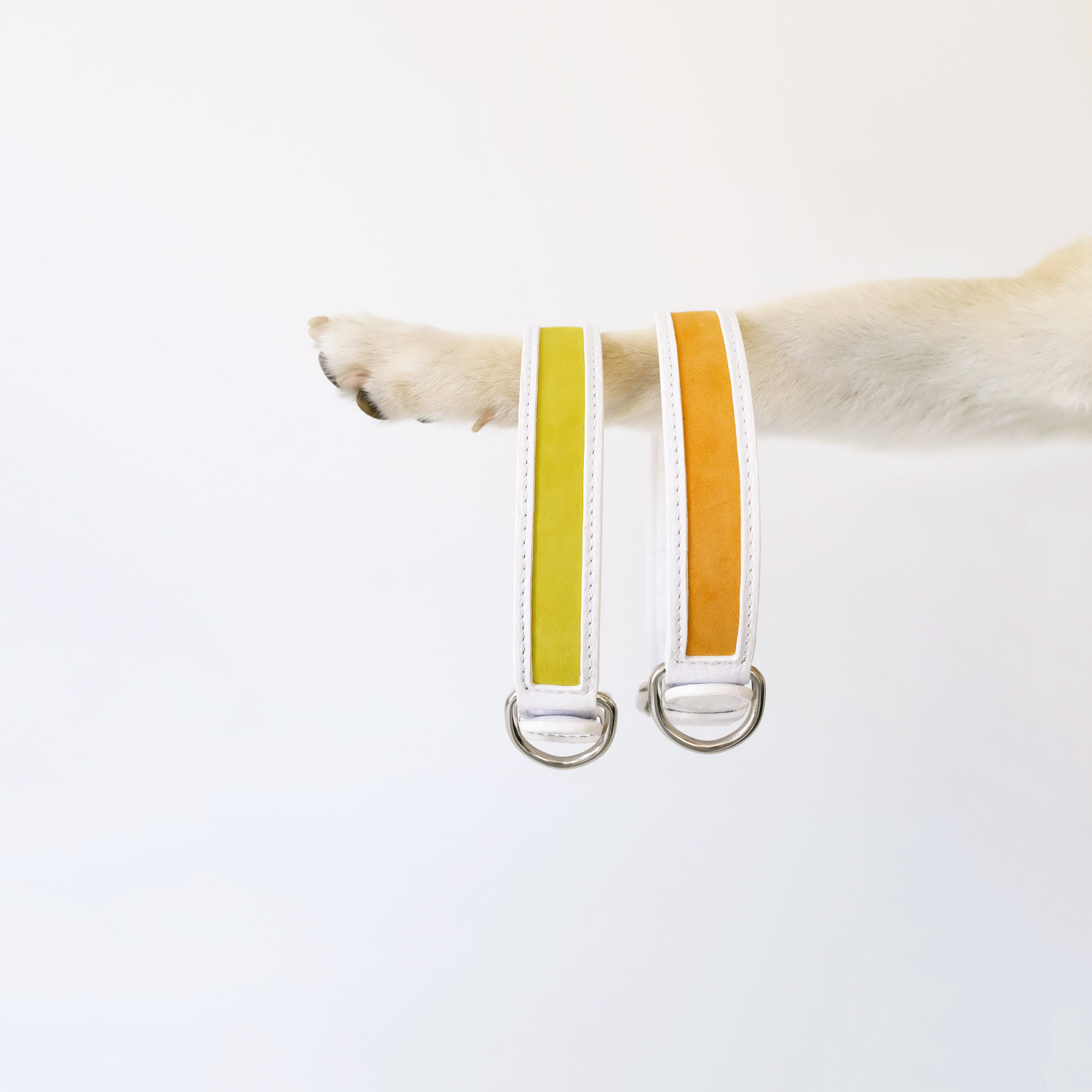 suede dog collars