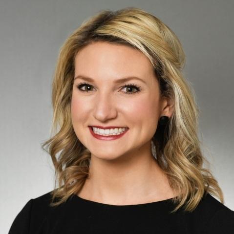 Melissa Turk   Litigation