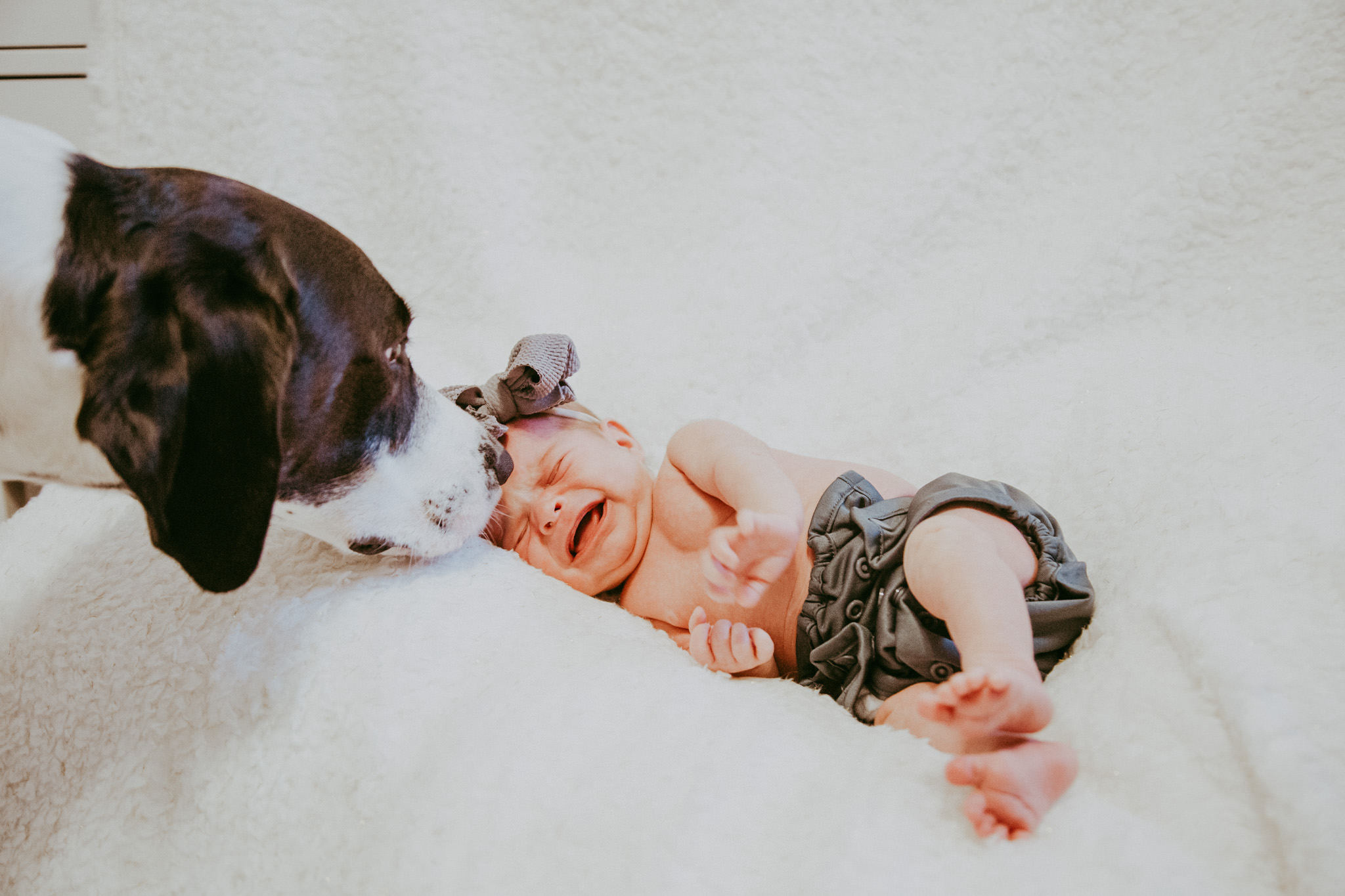 Nashville-Newborn-Photography-4.jpg