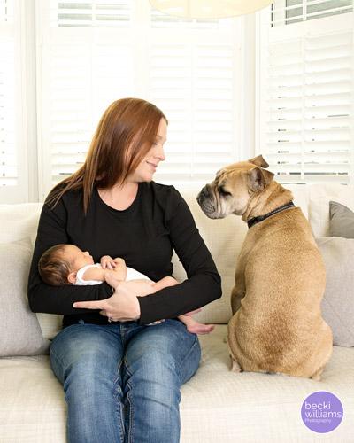 Newborn Photographer St Albans - dog