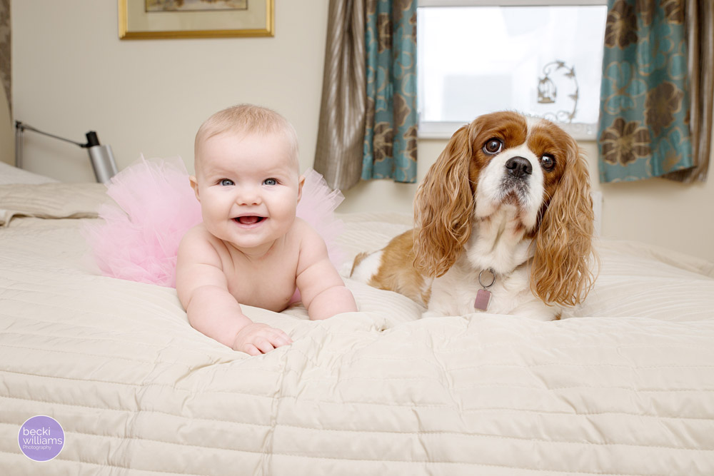 Baby Photos Hemel Hempstead - Baby and dog