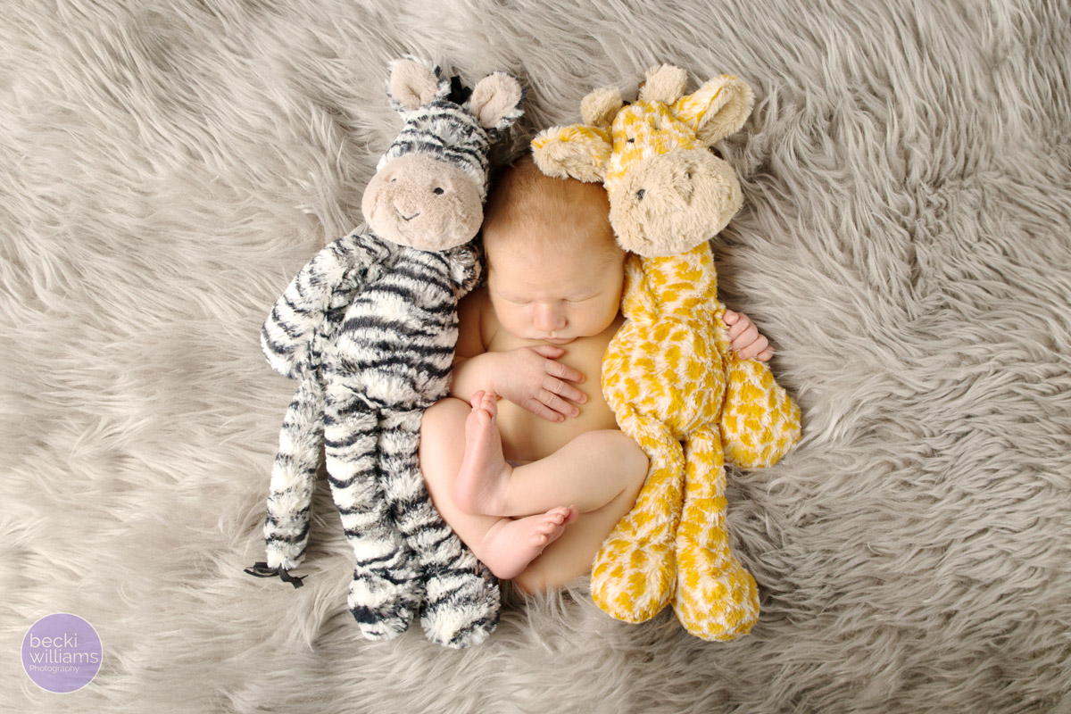 NEWBORN PHOTOS - fur blanket   - teddies - POSED - asleep