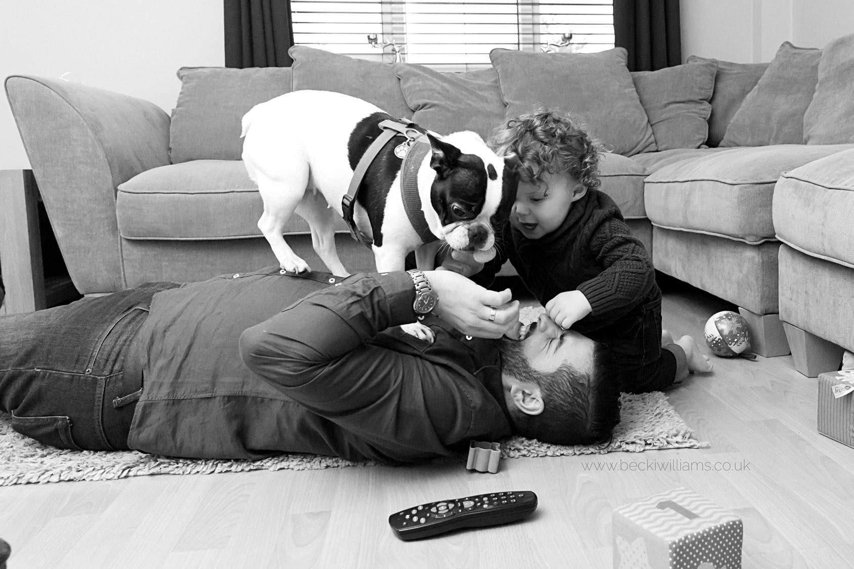 family-photographer-hemel-hempstead-dad-dog-fun-playing