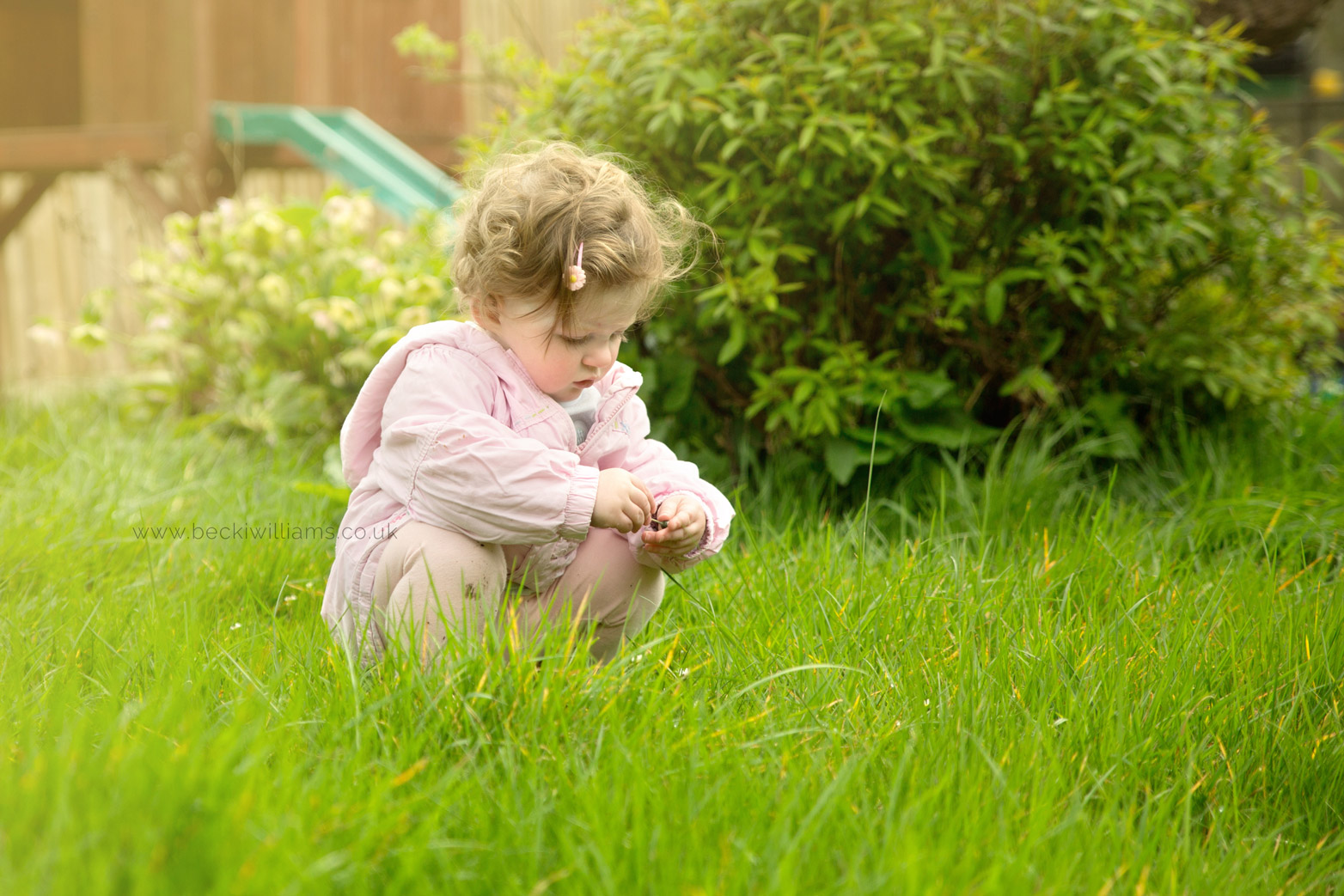 1 year old picks flowers in her garden for photo shoot