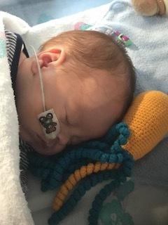 newborn-baby-photographer-hemel-hempstead-premature-preemie-octopus-for-a-preemie.jpg