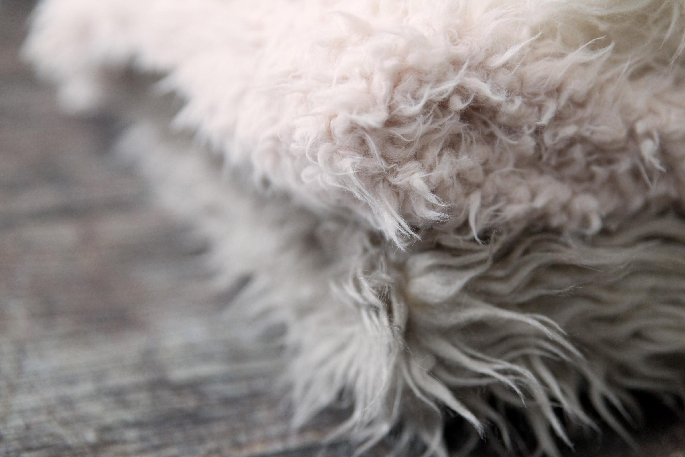 newborn-photos-st-albans-props-fur.jpg
