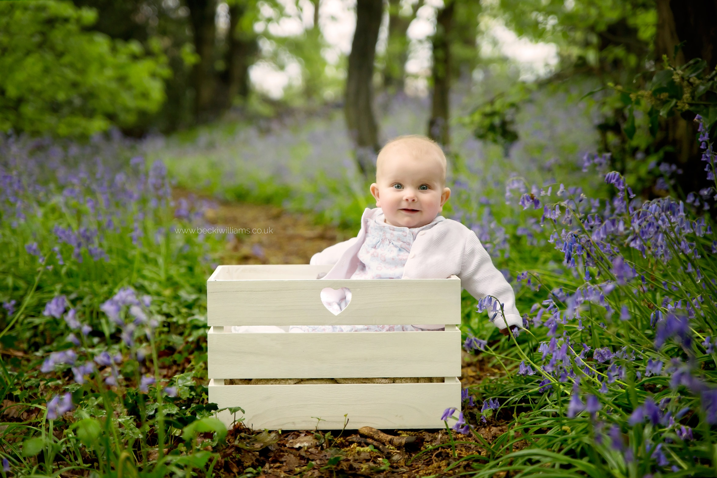 6 momth old girl sitting in a crate in amongst the bluebells in st albans