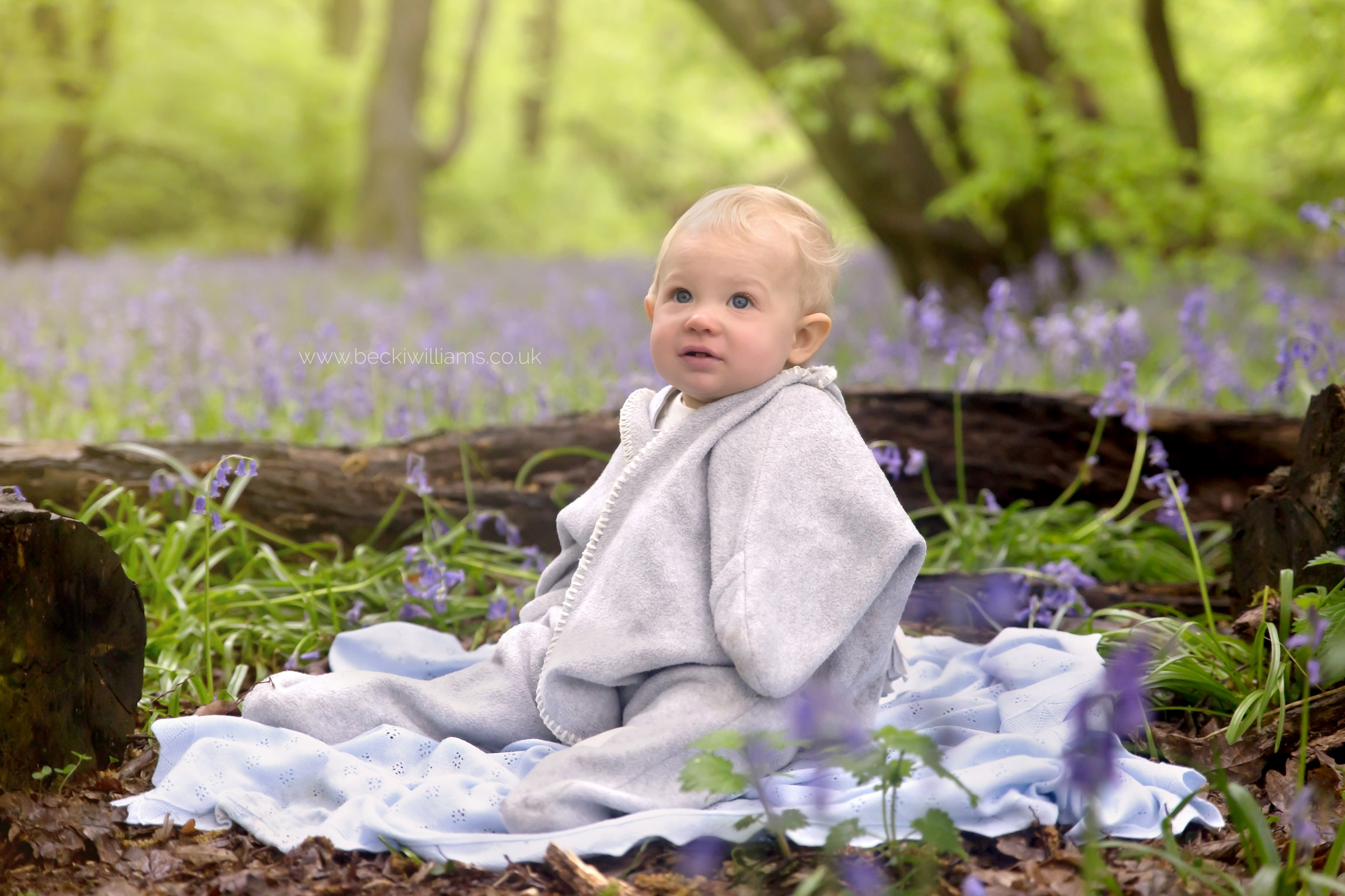 bluebells-st-albans-becki-williams-photography-12.jpg