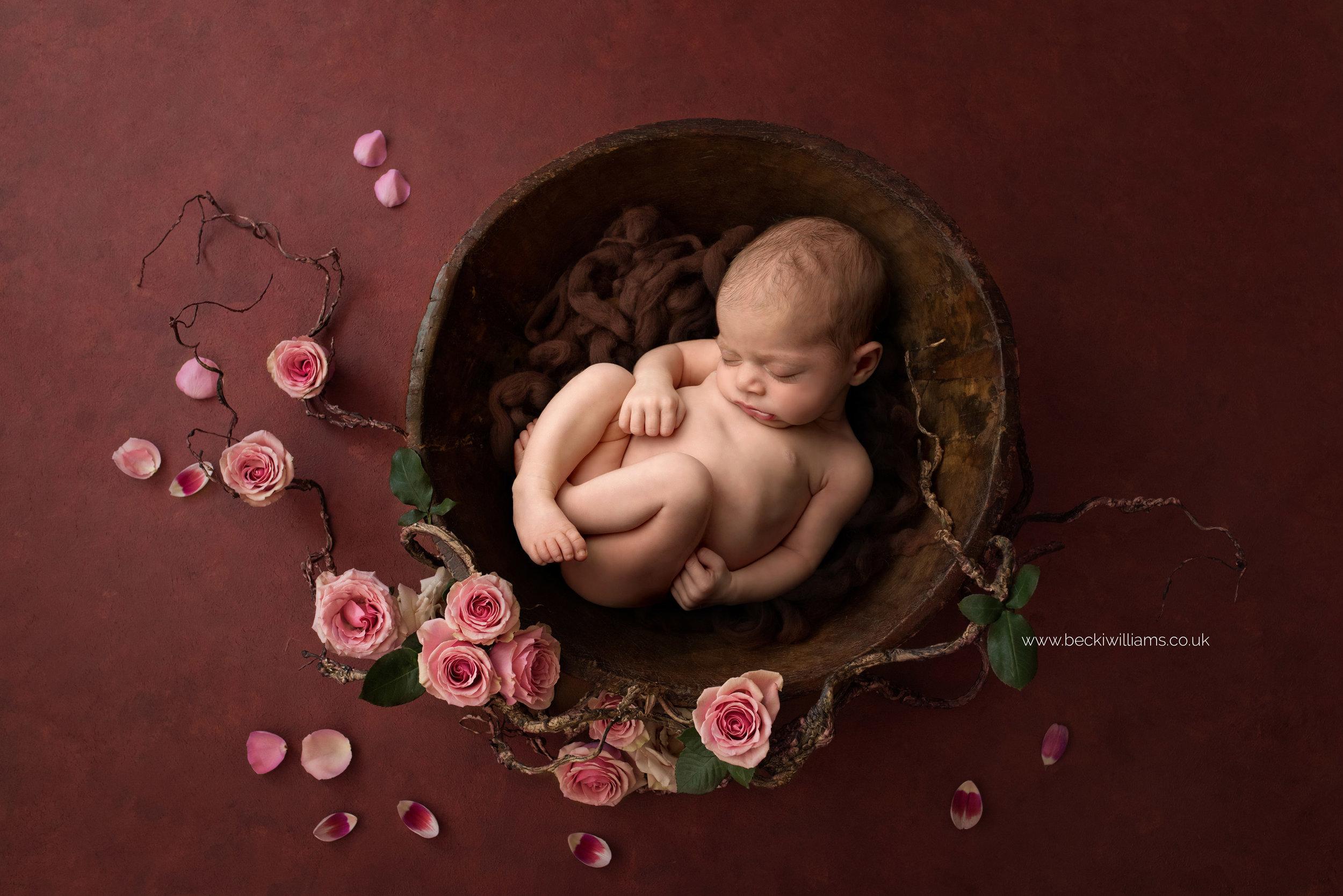 newborn-girl-portraits-hemel-hempstead-luisa-dunn-flowers.jpg