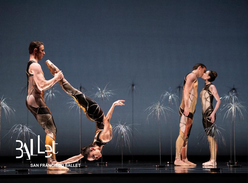 Bj�rk Ballet