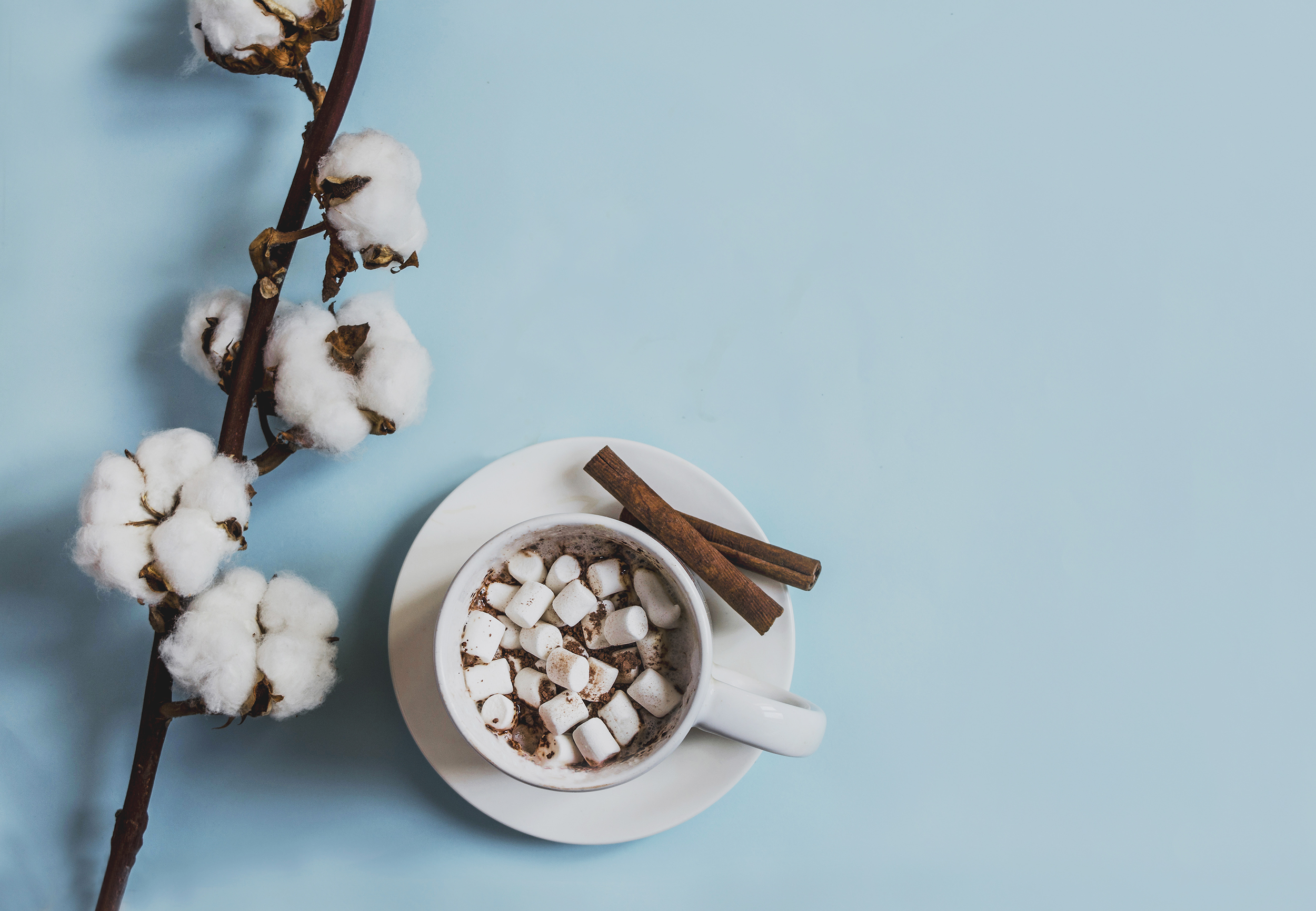 spring cup coffee