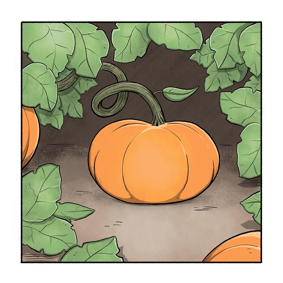 Pumpkin_Life_1.jpg