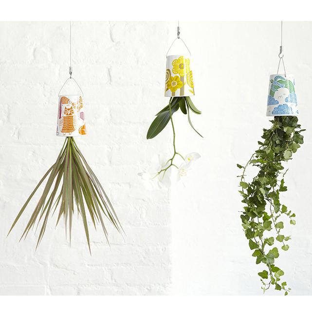 Marcus Oakley / Bosske Planters