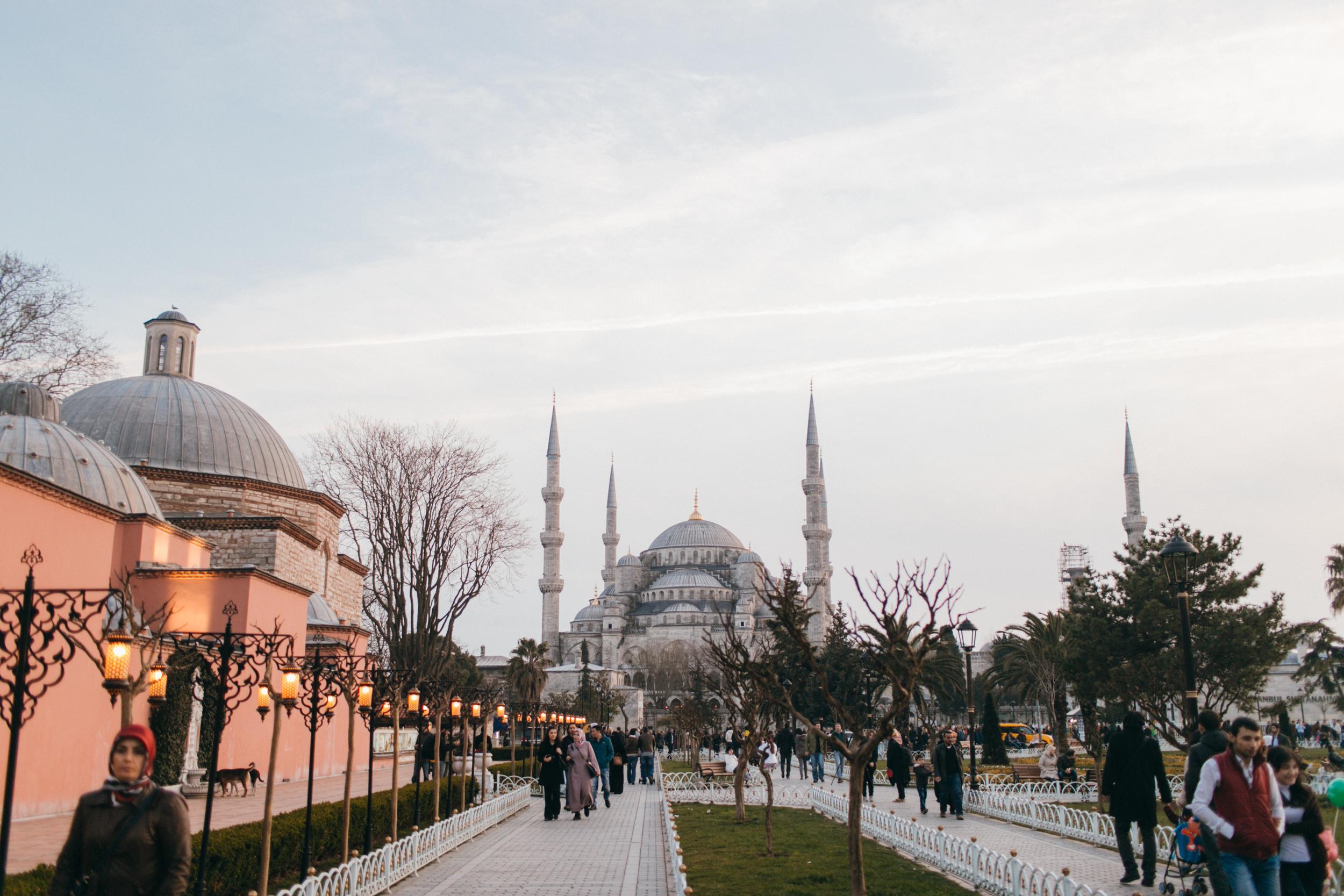 turkey088.jpg