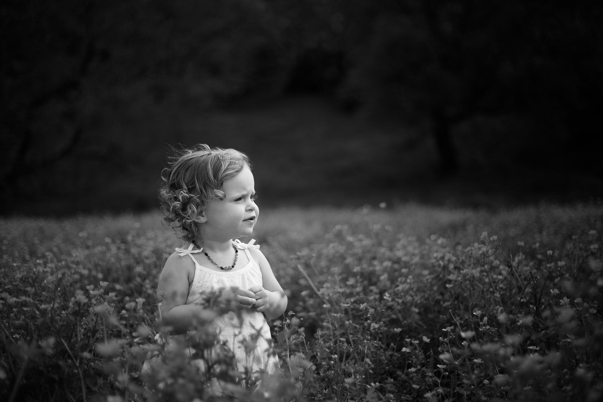 Ellee in flower field, Knoxville children's photographer