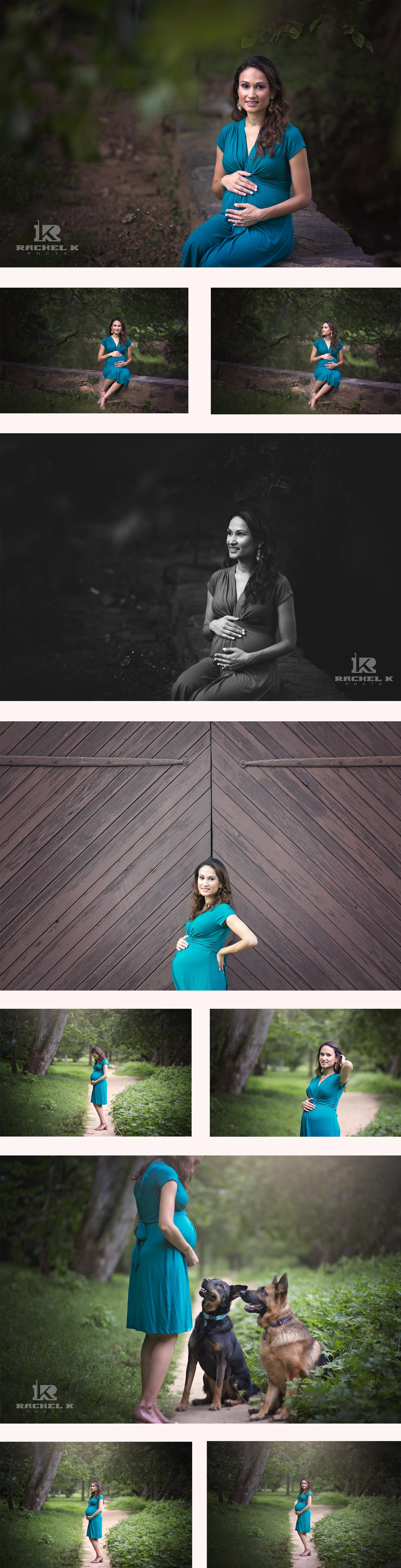Maternity session with dogs in Northern Virginia by Rachel K Photo
