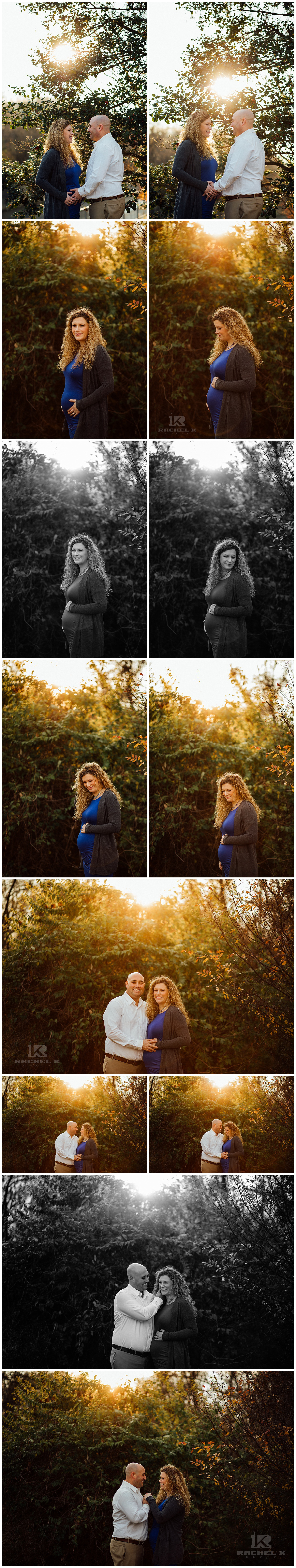 Fairfax county winter maternity session with dog by Rachel K Photo