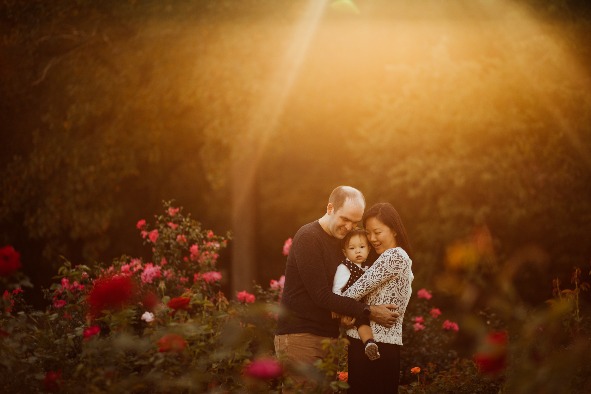 Family of three snuggle in backlit photo at rose gardens by Madison and Huntsville Alabama family photographer Rachel K Photo