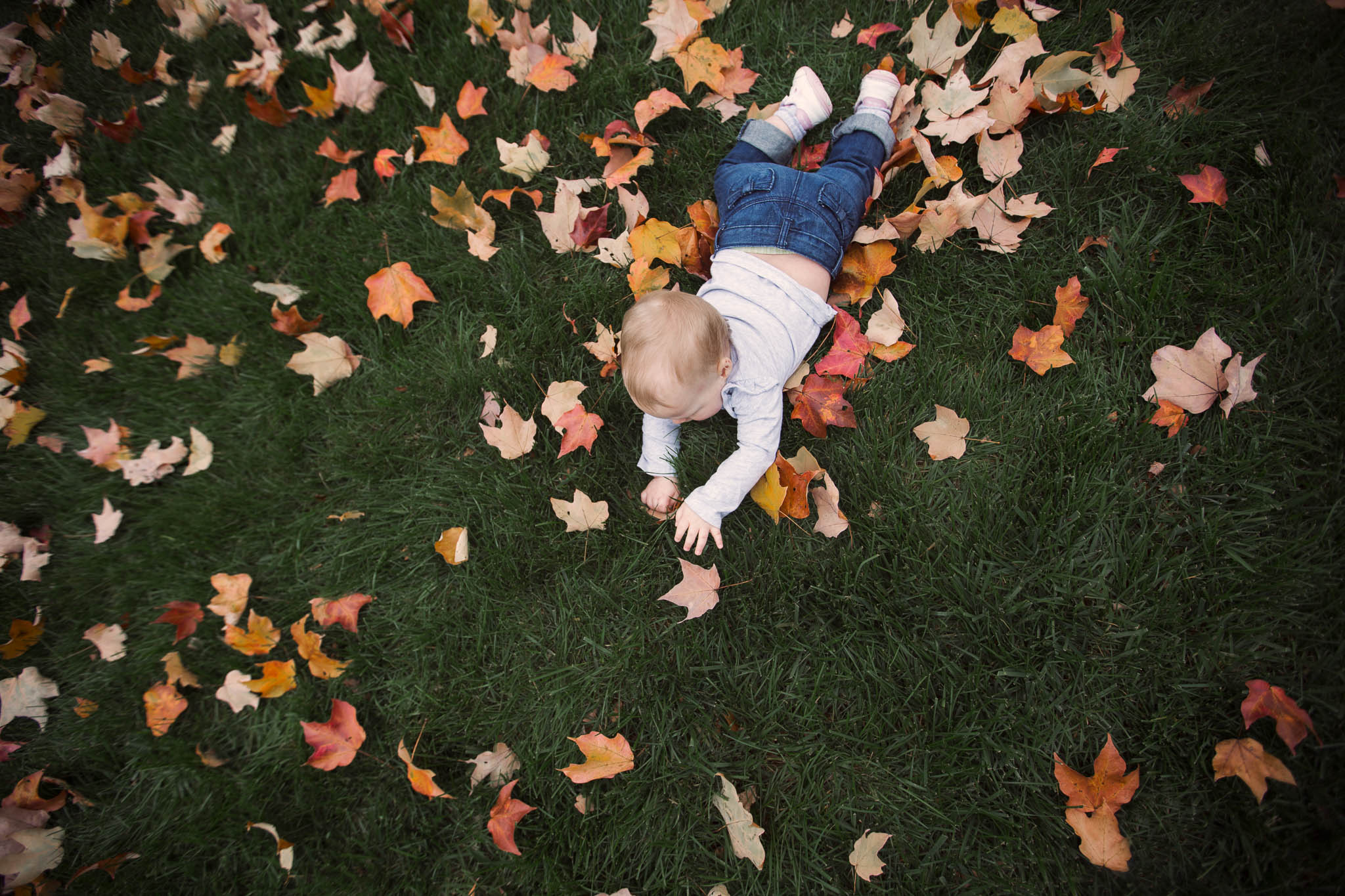 Baby plays in leaves by Madison and Huntsville Alabama family photographer Rachel K Photo