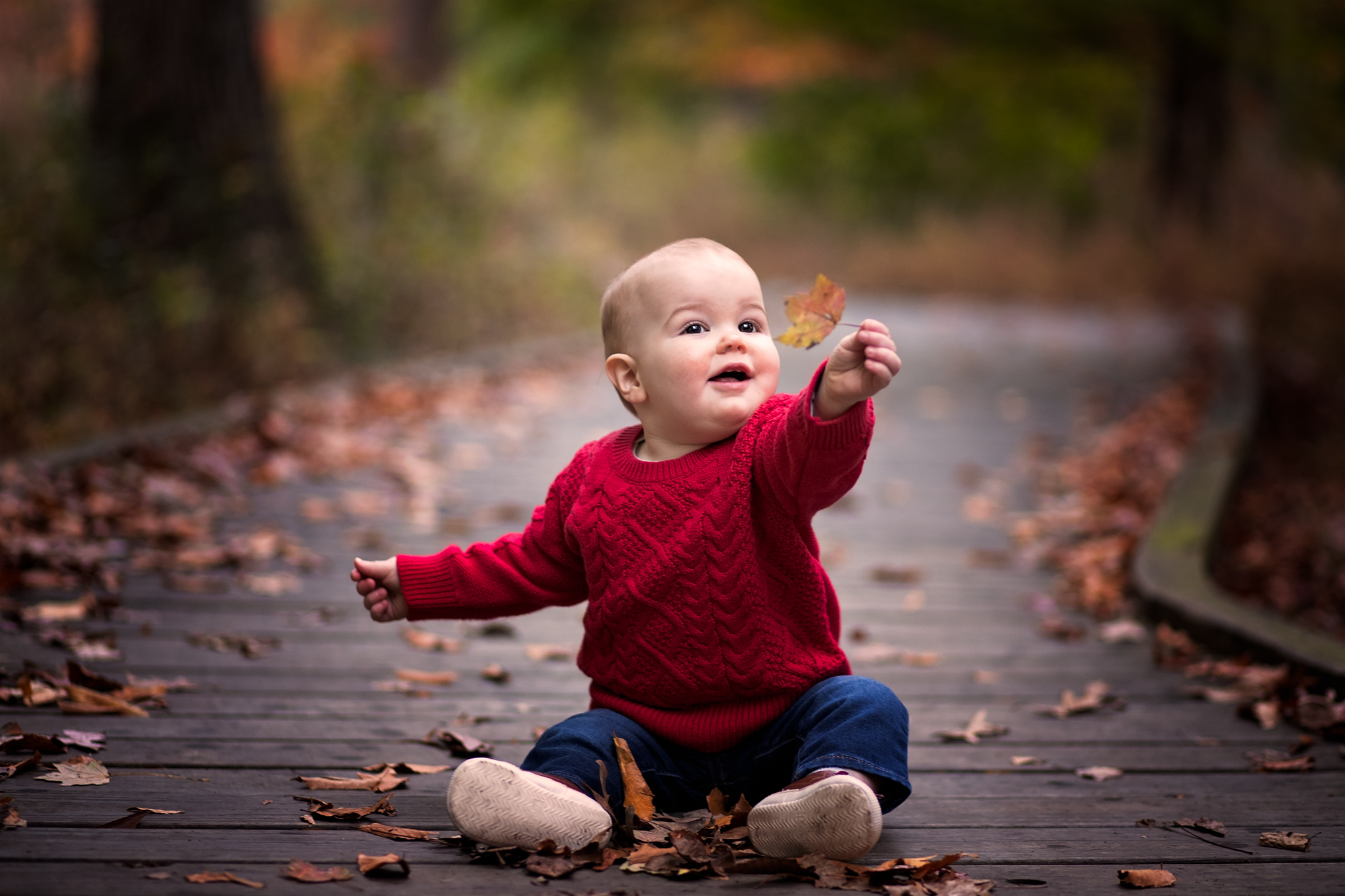 Baby boy in red sweater holding leaf by Madison and Huntsville Alabama family photographer Rachel K Photo