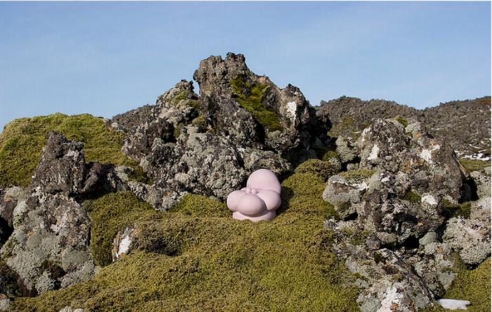 Icelandic Garden Photographs by Nikki Renee Anderson ( nikkireneeanderson.com )