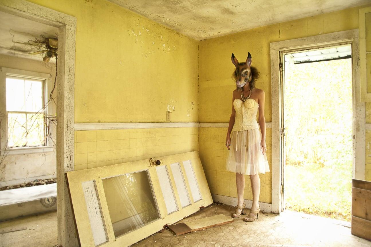animal instinct_yellow donkey_finalA_packert.jpg