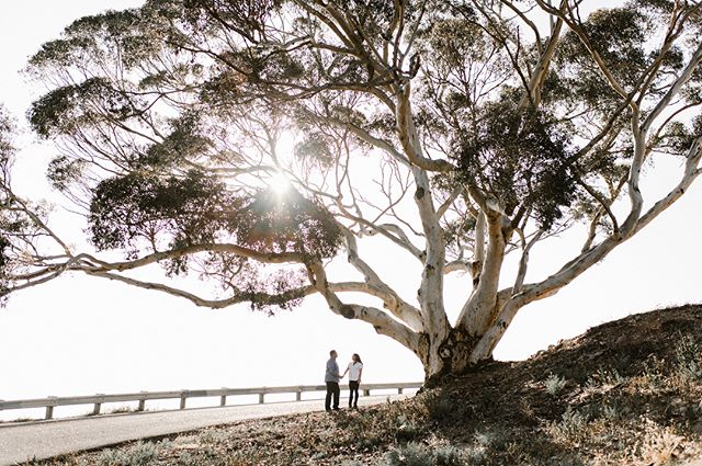 Prefiero un minuto contigo a una eternidad sin ti.  #couplesession #engagementphotos #savethedate #weddingphotography