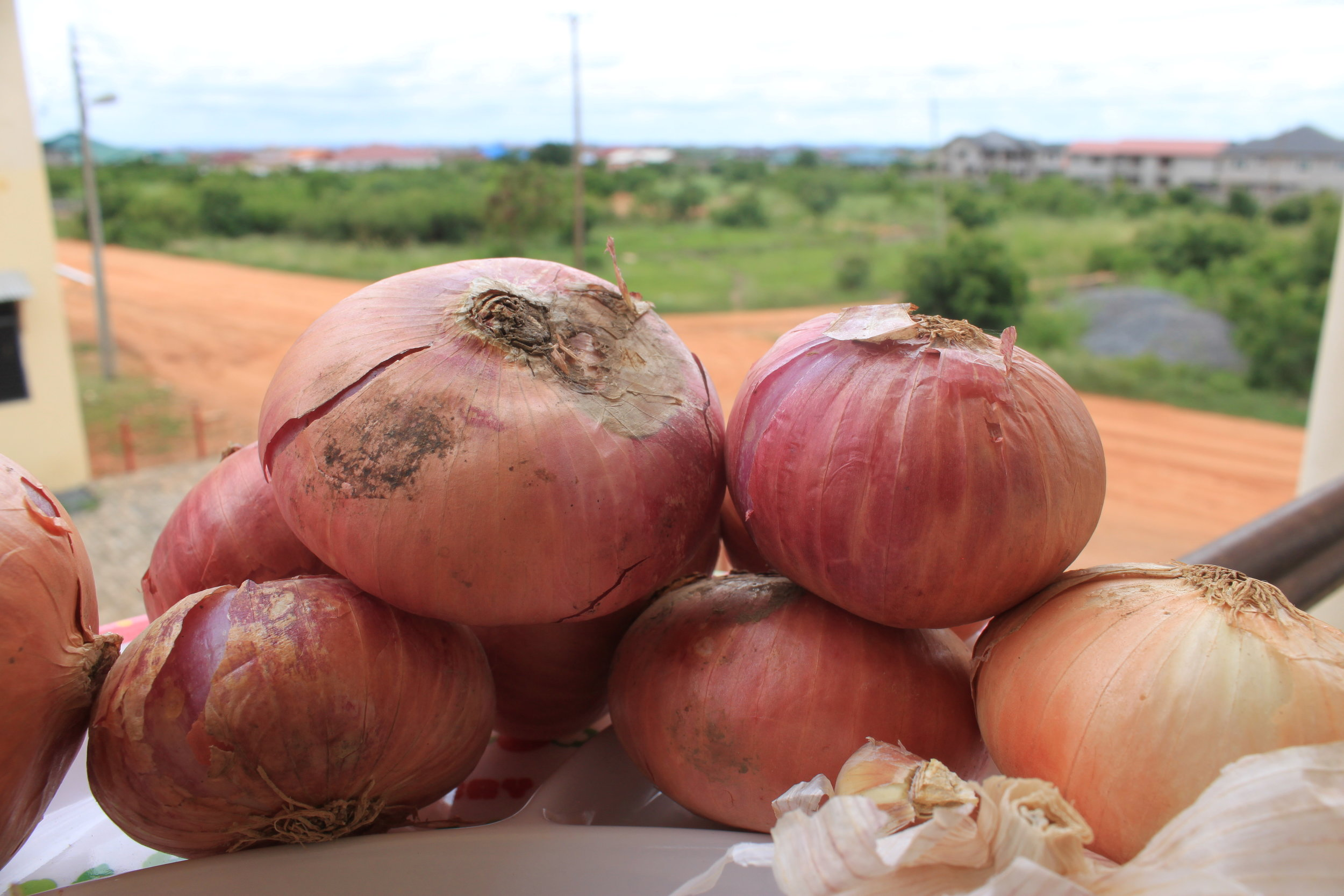 Onions and garlic to make palm nut soup with my friend Mary in Tema, Ghana.
