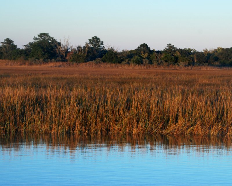 This is where we spent Thanksgiving, surrounded by a quiet marsh.