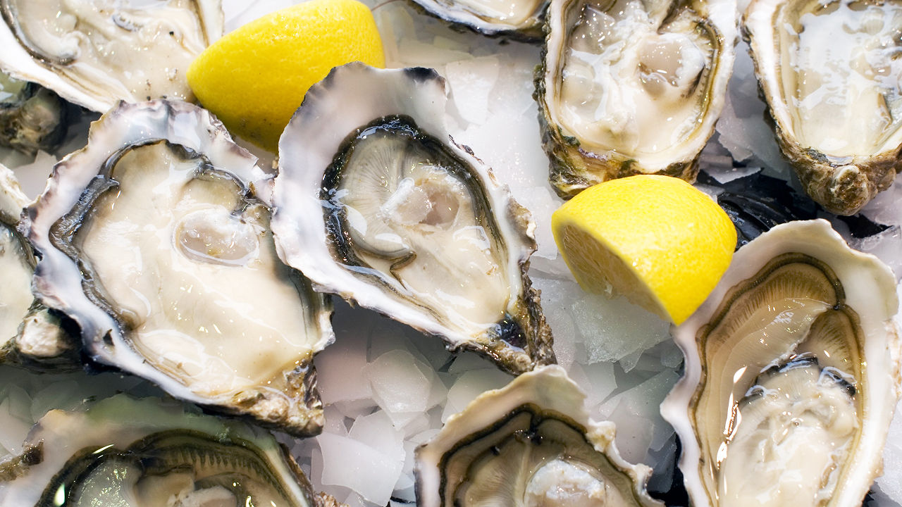 3017128-poster-1280-oysters.jpg