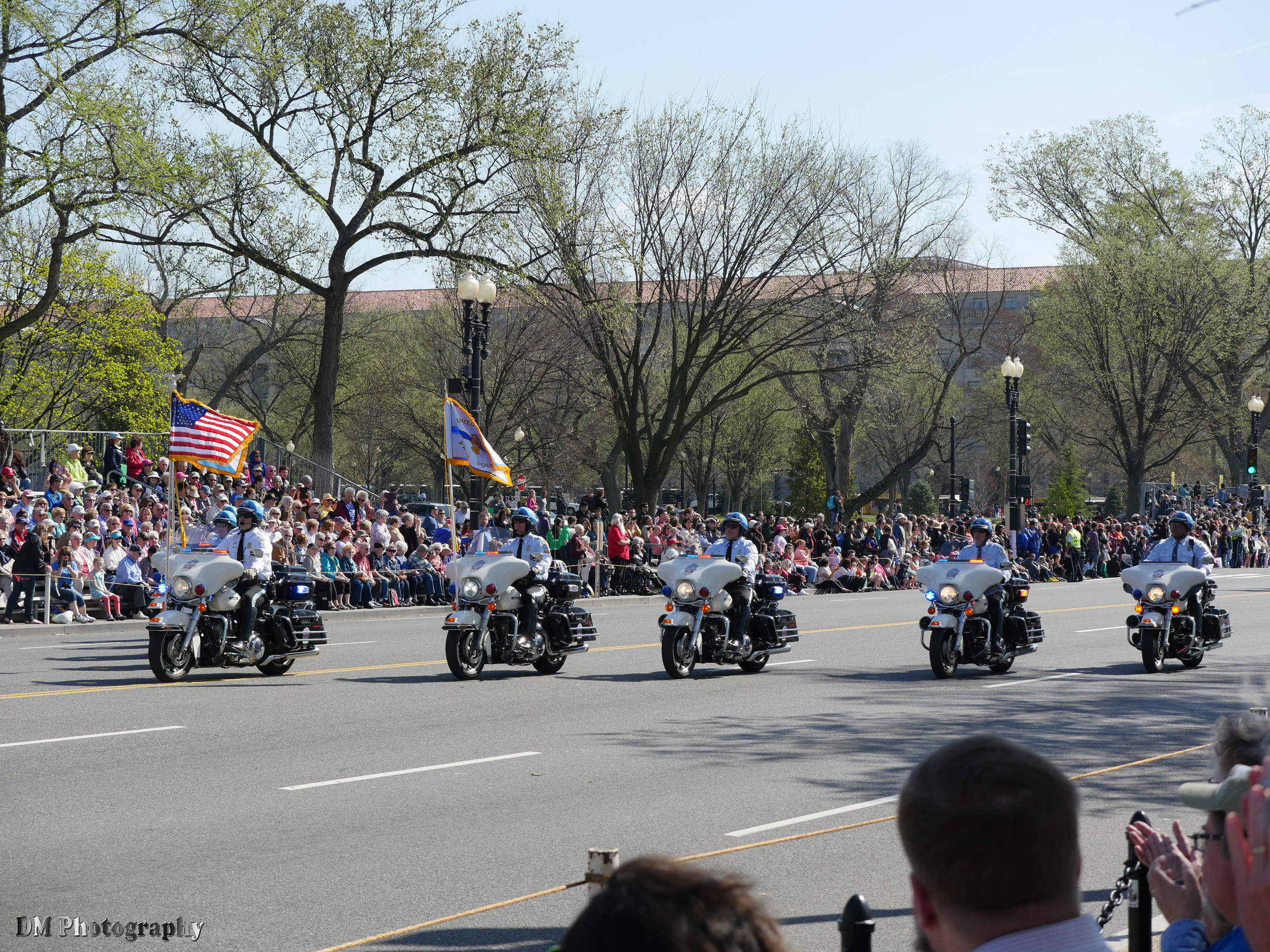 national_cherry_blossom_festival_2015_parade_01.jpg