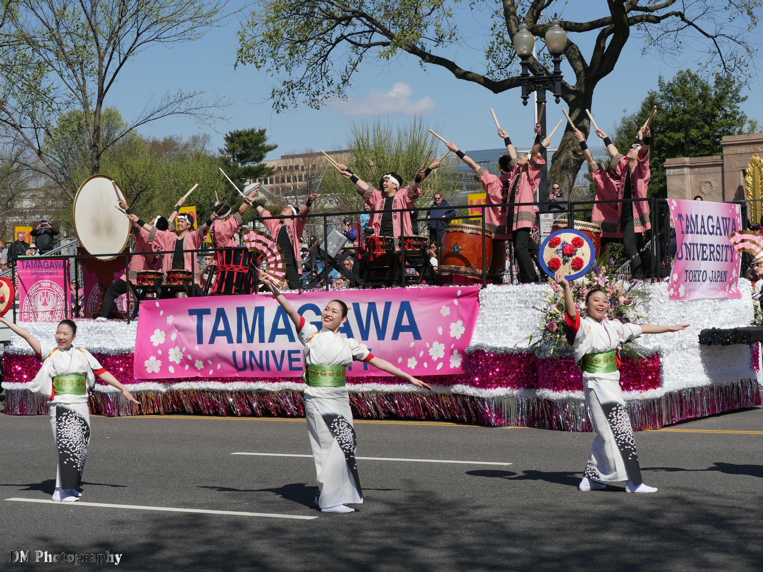 Tamagawa University Taiko Drummers & Dance troupe