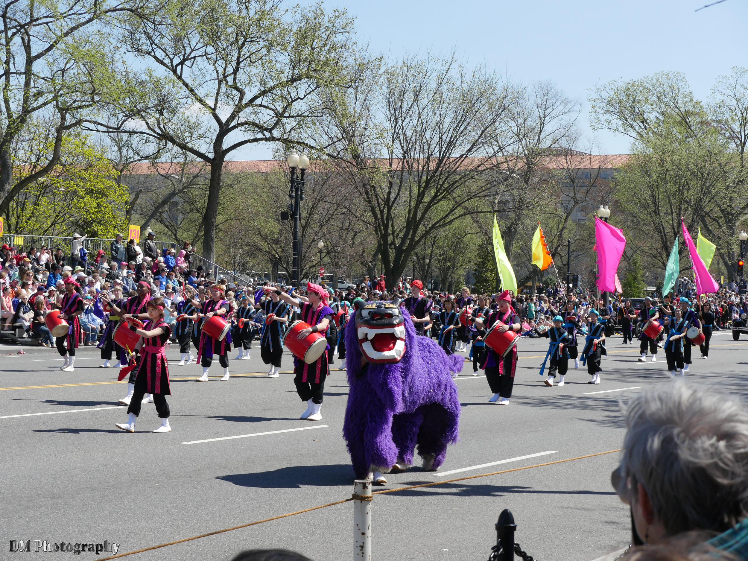 national_cherry_blossom_festival_2015_parade_16.jpg