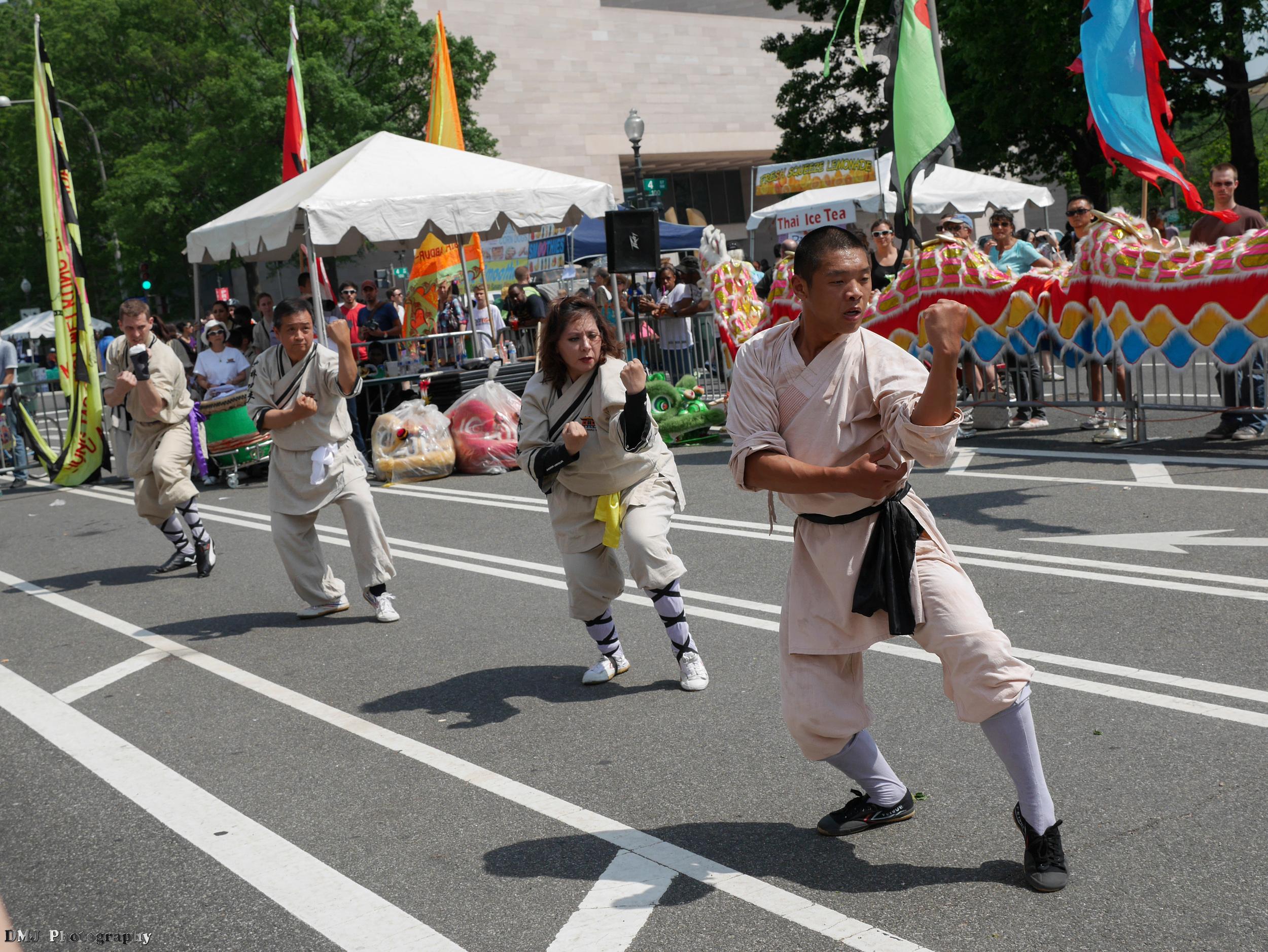 fiesta_asia_street_festival_2015_martial_arts_09.jpg