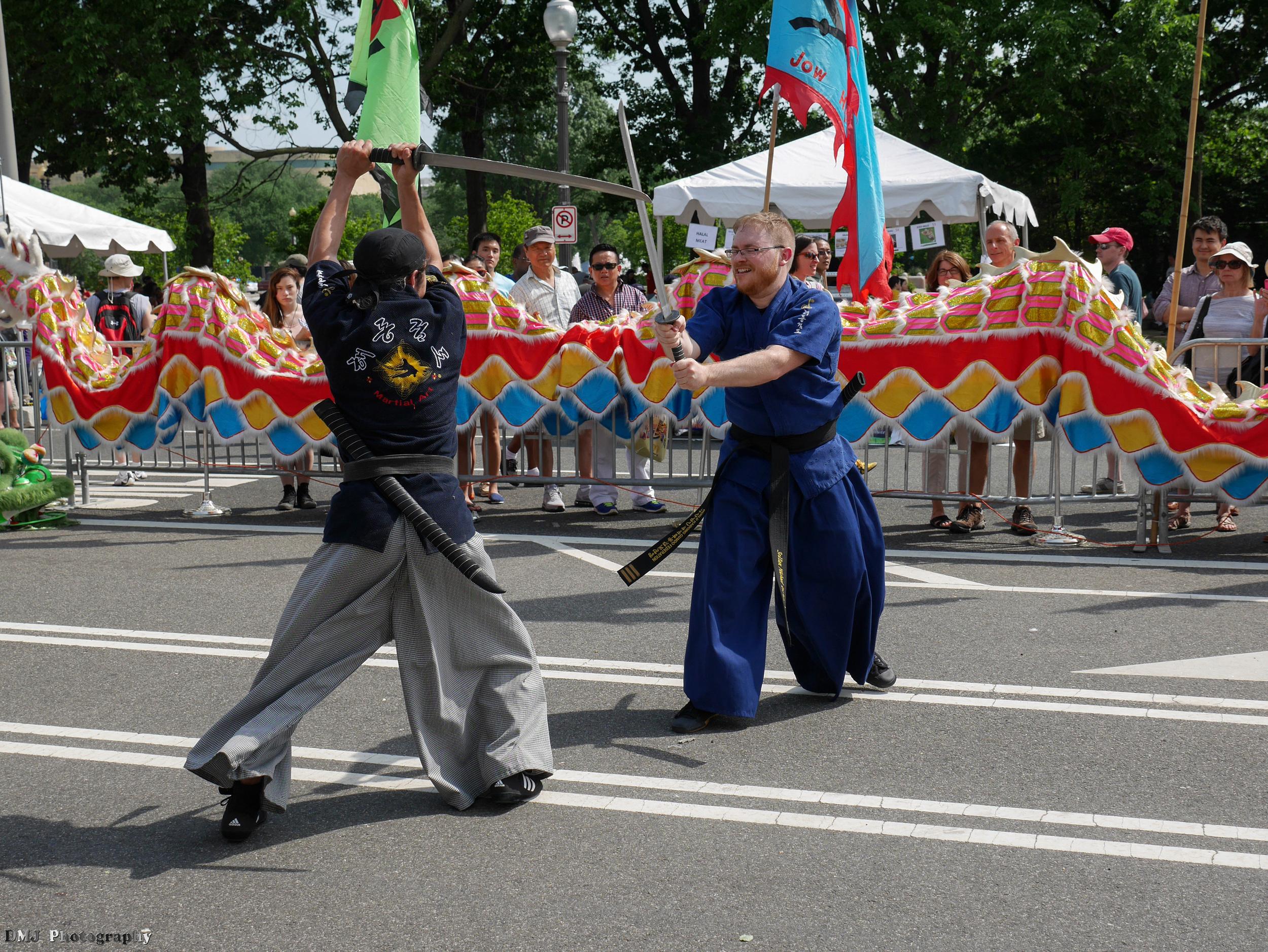 fiesta_asia_street_festival_2015_martial_arts_17.jpg