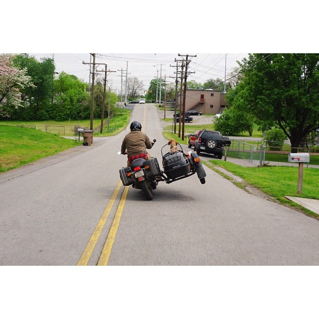 Maddie flying high in her new whip! #bmw #bmwmotorrad #r90/6 #sidecar #gomoto  (at Fort Houston)
