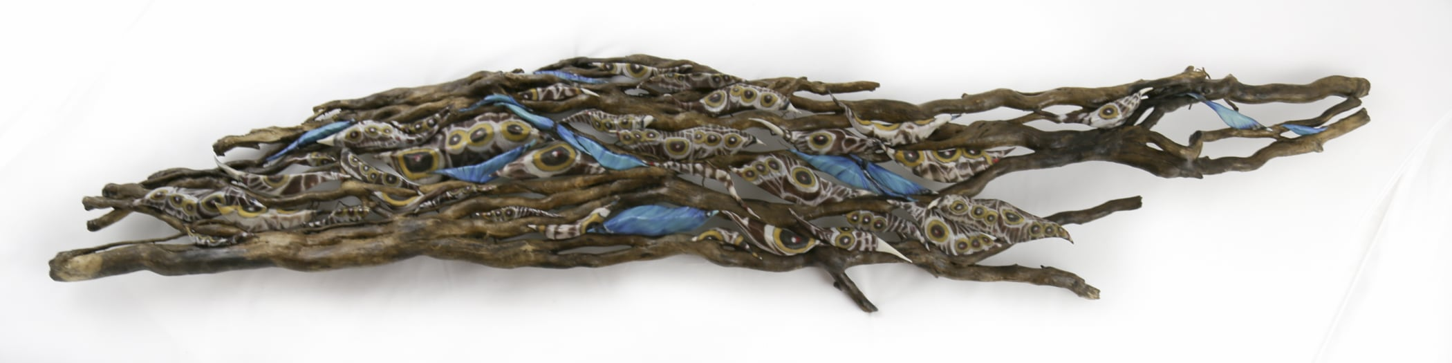 """""""Alive in the Flow"""" (13 x 59 x 5)  (Multiple pods created from macro photography of the outer and underside of the Common Blue Morpho Butterfly wings, nestled in tree roots which became dislodged in a recent flood... this piece is a wall hanging)."""