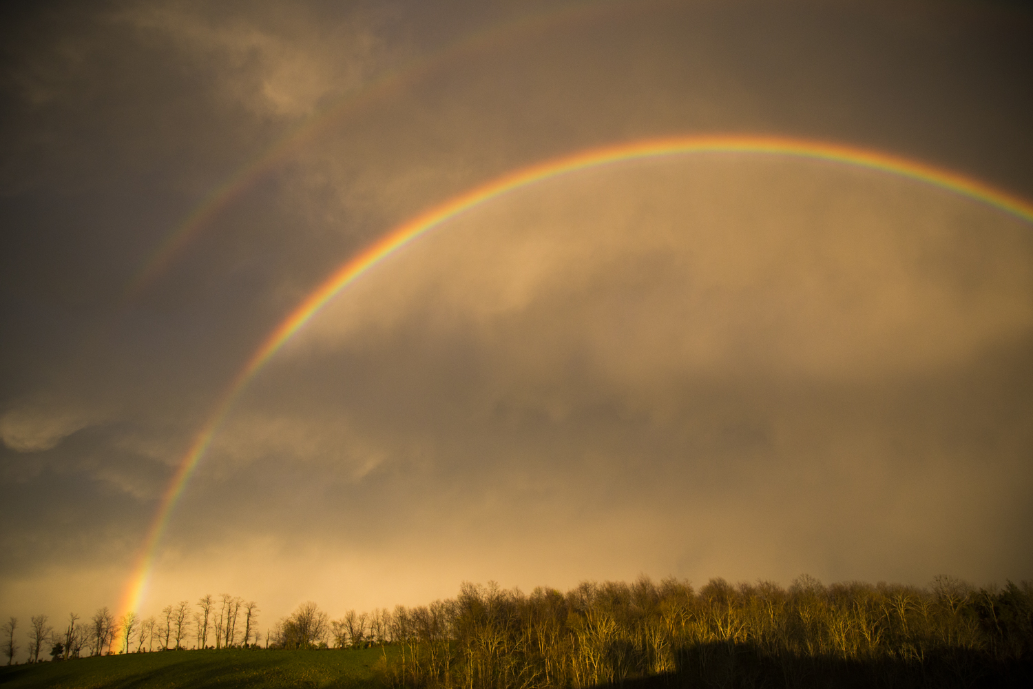 View of the most breath-taking rainbow I have ever seen, taken on our land