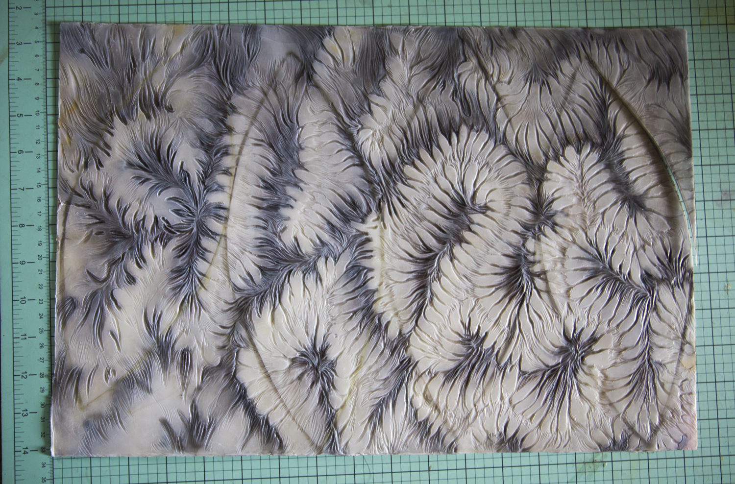 (Original photograph of coral, with relief carving into multiple layers of encaustic)