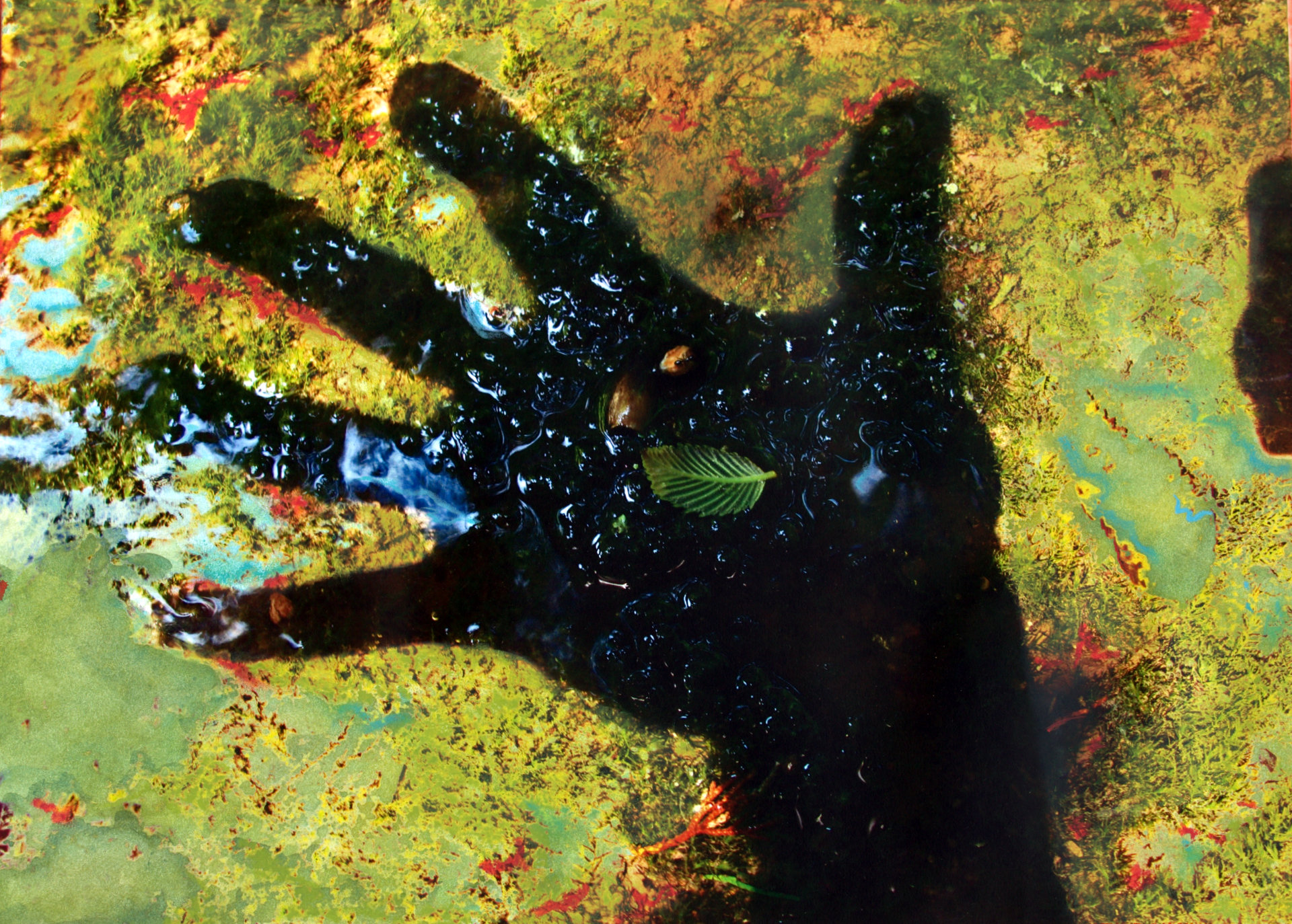 """""""Release"""", 2010, photograph, mixed media, WITNESS Project"""