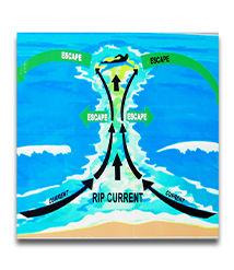 How to escape a Rip Current.