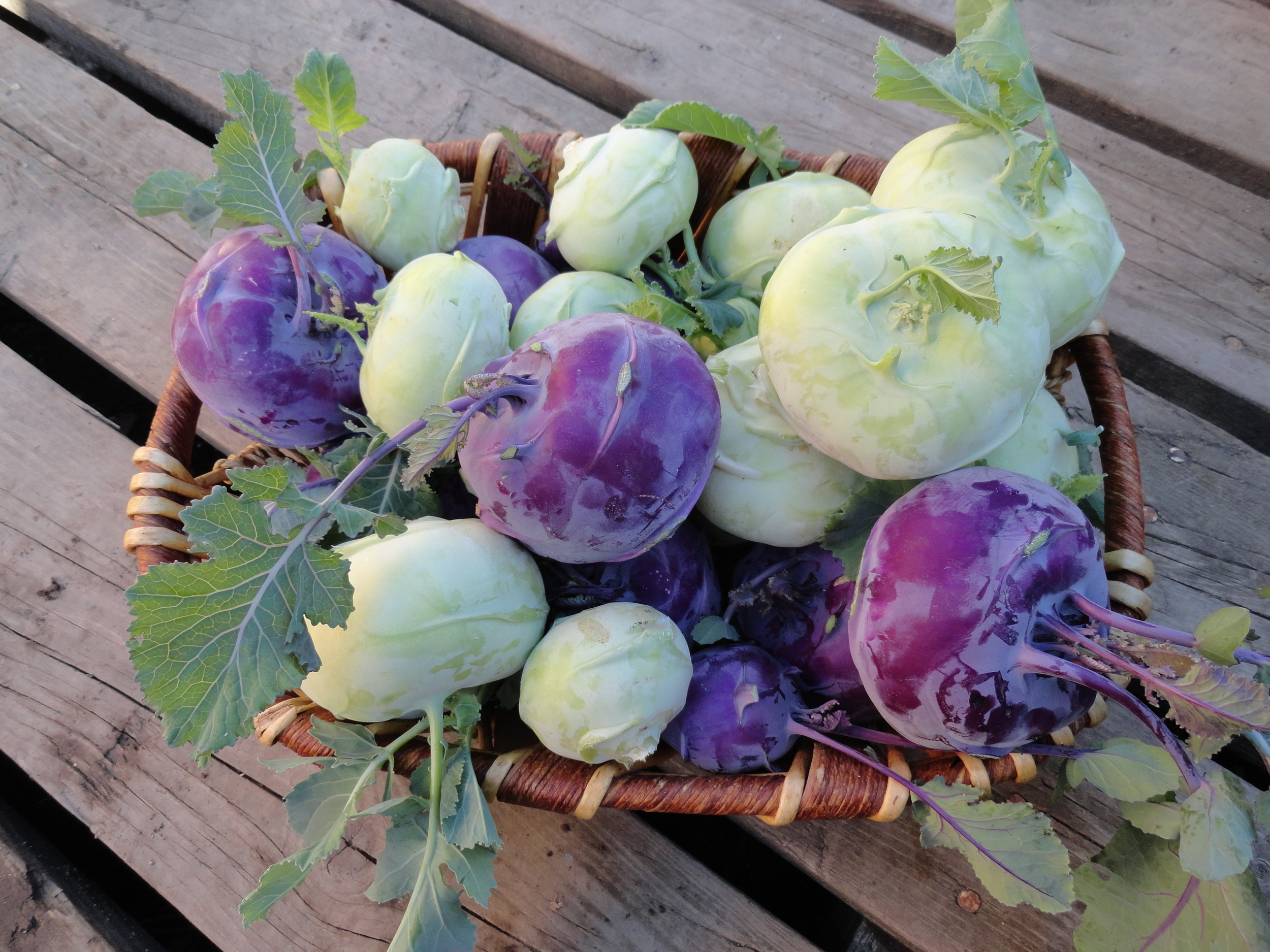 we'll have both green and purple kohlrabi