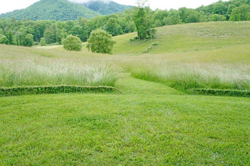 grassbraiding4.jpg