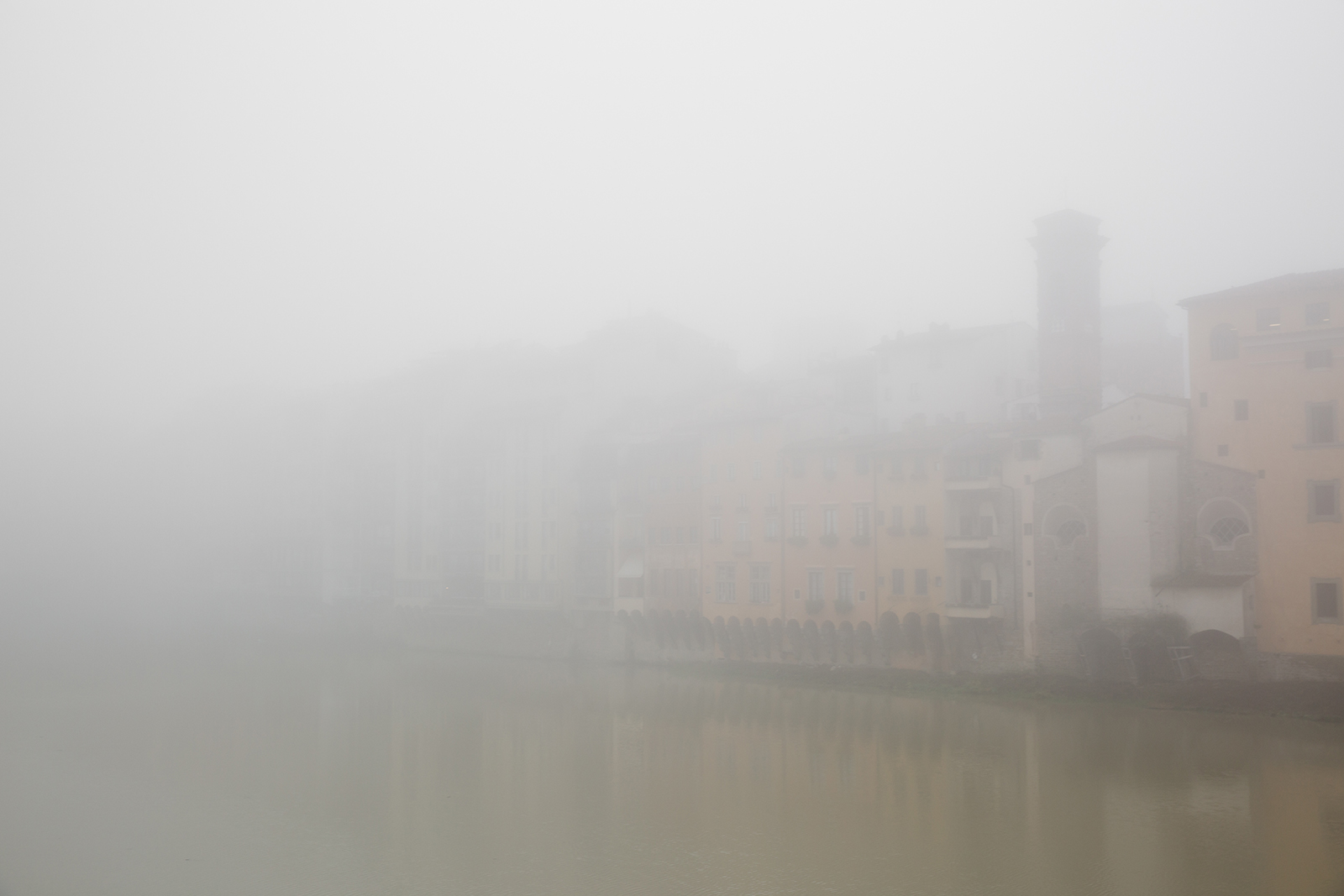foggy florence 9