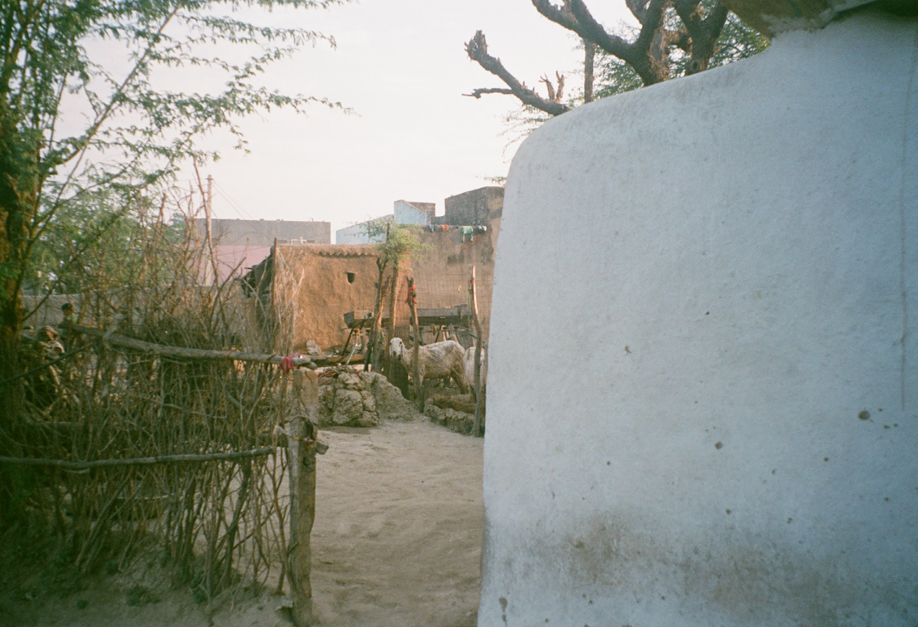 rural india village experience pictorial 5