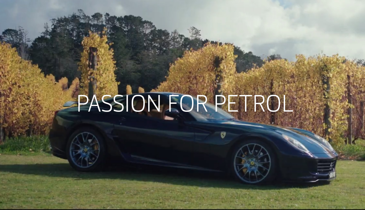 passion-for-petrol.jpg
