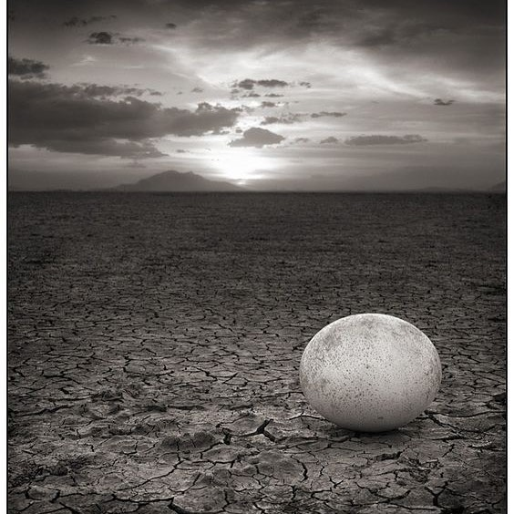 Ostrich Egg, Kalahari Desert in Botswana.  For thousands of years the San Bushmen have used ostrich shell beads as ornamentation.  Their jewellery is the first discovered jewellery in human history.  #jewelsofthekalahari #zezecollective #sanbushmen #ostrichegg #ceremony #sacred #naturalmaterials #ancientways #moderndesign