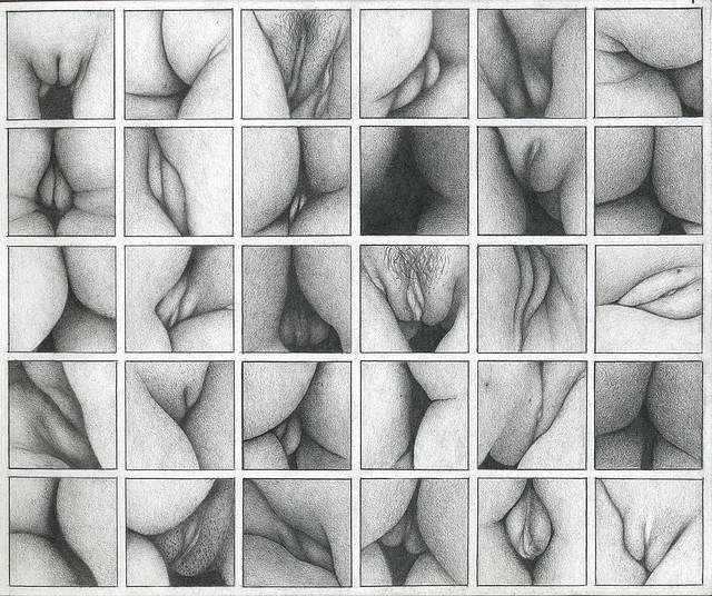 vulvas2