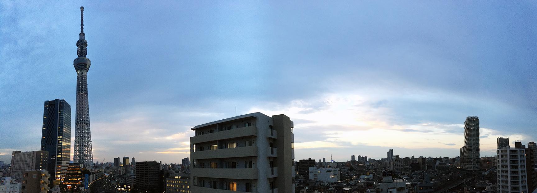 ONE@Tokyo Hotel Rooftop View.jpg